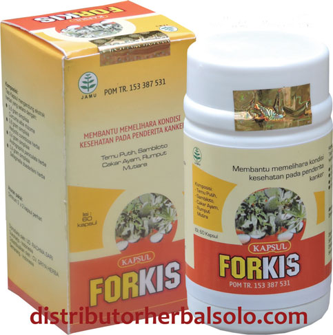 forkis-herbal-kista
