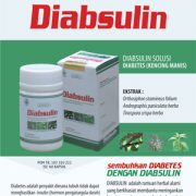 diabsulin kapsul diabetes brosur