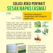 herbal-asma-pelega-napas-pr