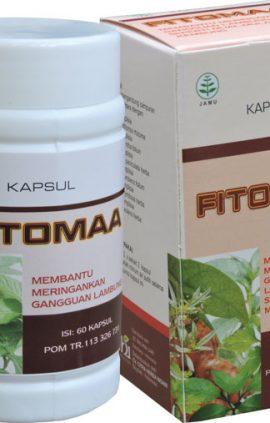 fitomaa-obat-maag