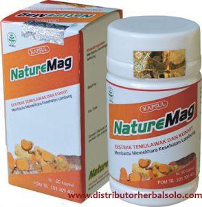 naturemag-obat-maag