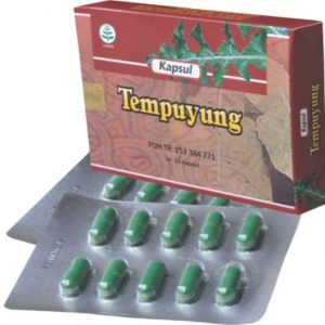 herbal tempuyung