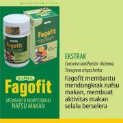 fagofit-tambah-nafsu-makan