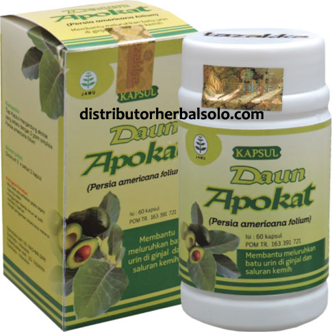 kapsul-herbal-apokat
