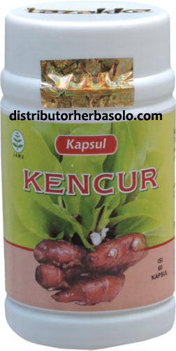 kapsul-herbal-kencur