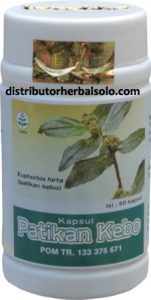 kapsul-herbal-patikan-kebo