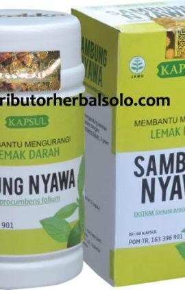 kapsul-herbal-sambung-nyawa