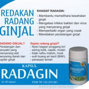 radagin-kapsul-radang-ginja