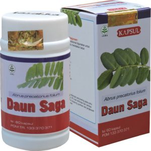 daun-saga-kapsul