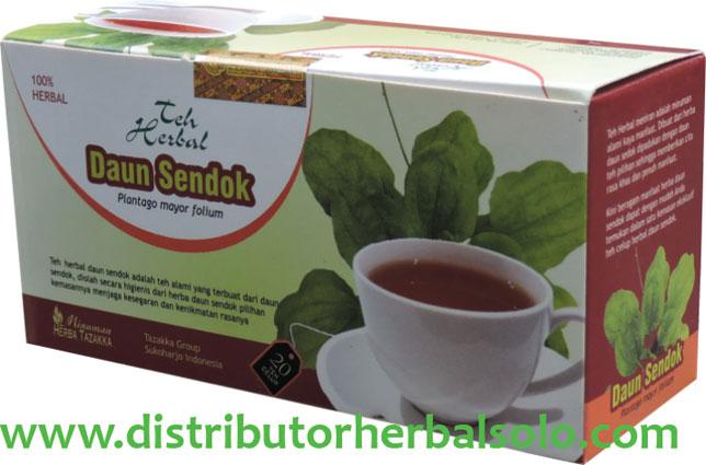 teh-herbal-daun-sendok
