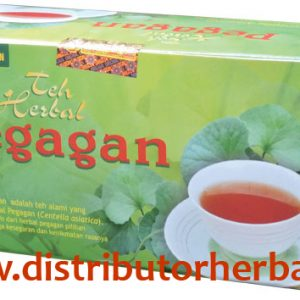 teh-herbal-pegagan