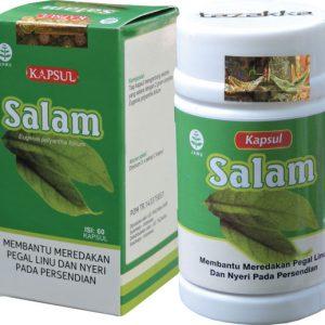 daun-salam-kapsul